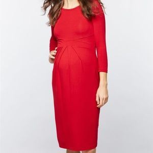 Isabella Oliver Dresses - Isabella Oliver Effra Pleat Maternity Dress